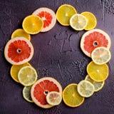 Куски цитрусовых фруктов лимона, апельсина, грейпфрута в форме круга на темной предпосылке Стоковые Изображения