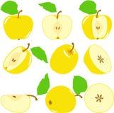 Куски Яблока, собрание иллюстраций Стоковое фото RF