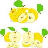 Куски Яблока, собрание иллюстраций Стоковые Изображения