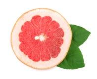 Кусок грейпфрута при листья изолированные на белой предпосылке Взгляд сверху Стоковое Изображение