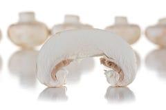 Кусок гриба Стоковые Изображения