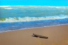 кусок дерева на дезертированном песчаном пляже Стоковые Изображения RF