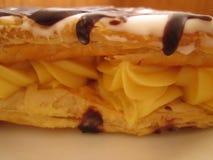 Кусок заварного крема с Webbing шоколада Стоковое Фото