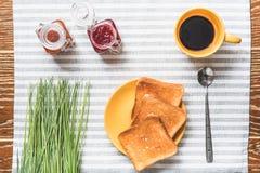 Кусок зажаренного хлеба для закуски Стоковая Фотография RF