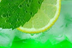 Кусок лимона, лист мяты, сода и лед Стоковая Фотография