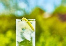 Кусок сверкная воды и лимона Стоковая Фотография