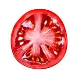 Кусок томата изолированный на белой предпосылке, взгляд сверху иллюстрация штока