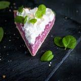 Кусок французского пирога с творогом и merengue поленики Стоковые Изображения