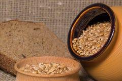 Кусок хлеба и зерно пшеницы Стоковое фото RF