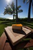 Кусок чизкейка lilikoi на красивый гаваиский день стоковое изображение