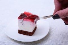 Кусок handmade пирога вишни на плите в белой предпосылке Стоковые Изображения RF