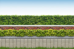 Кустарники и загородка кирпича Стоковая Фотография RF