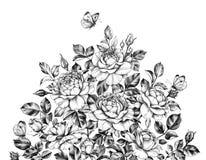 Куст роз руки вычерченный с бабочками бесплатная иллюстрация