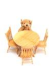 кухня медведя Стоковые Фото