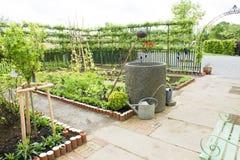 кухня сада фенхеля кровати стоковые фотографии rf