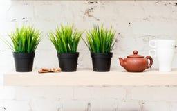 Кухня утра с комнатными растениями Стоковые Изображения RF