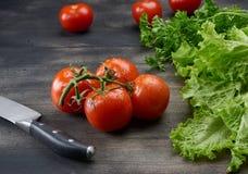 Кухонный нож в таблице с овощами Стоковые Фотографии RF