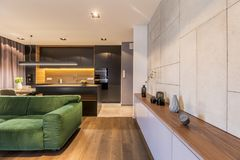 Кухонный шкаф с вазами и часами в современном элегантном интерьере живущей комнаты с зеленой софой бархата и темным углом кухни Стоковая Фотография