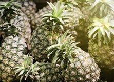 Куча ананаса Стоковые Фото