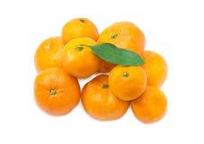 Куча апельсинов мандарина на светлой предпосылке Стоковая Фотография RF