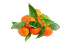 Куча апельсинов мандарина с хворостинами и листьями Стоковое Фото