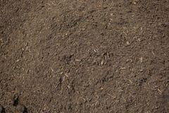 Куча богатой, здоровой грязи компоста Стоковые Изображения RF