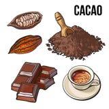 Куча бурого пороха, плодоовощ какао и чашки горячего шоколада бесплатная иллюстрация