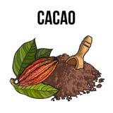 Куча бурого пороха с деревянным ветроуловителем и какао приносить иллюстрация вектора