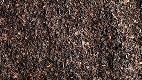 Куча высушенного урожая лист черного чая вращая близко вверх по взгляду сверху акции видеоматериалы