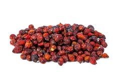 Куча высушенных плодов шиповника изолированных на белой предпосылке Стоковые Фотографии RF