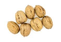 Куча грецких орехов в раковинах изолированных на белизне Стоковое Изображение