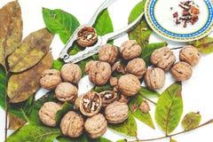 Куча грецких орехов лежа на листьях Около Щелкунчика и поддонника Стоковое Фото