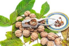 Куча грецких орехов лежа на листьях Около Щелкунчика и поддонника Стоковые Фото