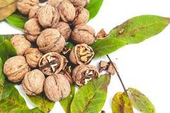 Куча грецких орехов лежит na górze листьев на белизне Стоковое фото RF