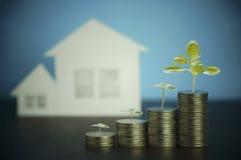 куча денег, монетки при завод или дерево растя вверх, концепция в деле о займе, продавать, финансы и покупая дом, дом стоковое изображение