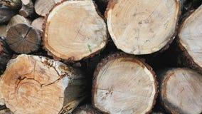 Куча деревянных журналов готовых на зима сток-видео