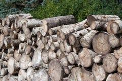 Куча древесины Стоковое Фото