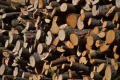 Куча древесины стоковая фотография