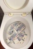 Куча денег в туалете Стоковое Фото