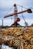 Куча деревянных журналов с краном Tyumen Россия Стоковое Изображение RF