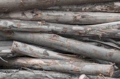 Куча деревянных журналов Стоковая Фотография RF