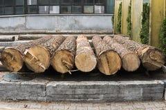 Куча журналов лежит на платформе леса, лесопилке Обрабатывать тимберса на лесопилке стоковое изображение