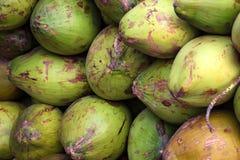 Куча зрелых кокосов на рынке Стоковые Изображения
