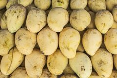Куча зрелых манго на рынке, деле плодоовощ Стоковое Изображение RF