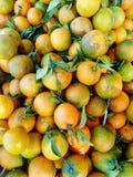 Куча зрелых органических доморощенных Tangerines с листьями зеленого цвета на рынке фермеров Взгляд сверху Падение осени сбора Стоковое Фото