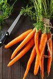Куча зрелых морковей Стоковые Фотографии RF