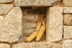 Куча зрелых corns Стоковые Фотографии RF