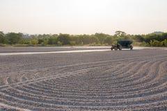 Куча кассавы переноса работника сырцовая трактором к тележке раньше Стоковое Фото