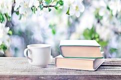 Куча книг, стекла и чашка outdoors скачут или летнее время Стоковая Фотография