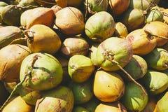 Куча кокосов Стоковое фото RF